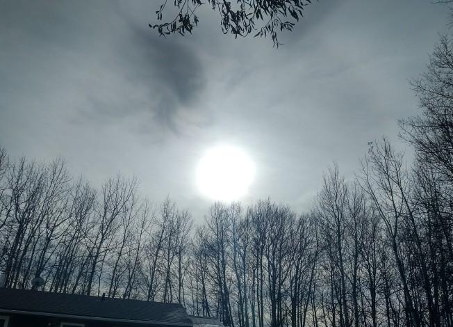 wintery sun in the fall